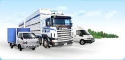 Бизнес-стратегия современной транспортной компании