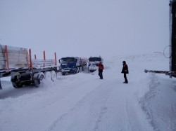 Сезонный фактор, насколько он важен в перевозке грузов?