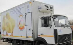 Правила доставки скоропортящихся грузов